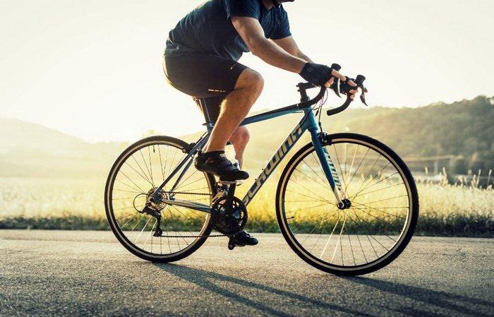 Schwinn Fastback ROad Bike